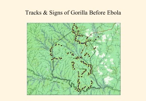 Impact of Ebola 1